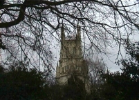 Gloucester Cathedral through the trees