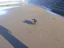 So much fun on a deserted beach