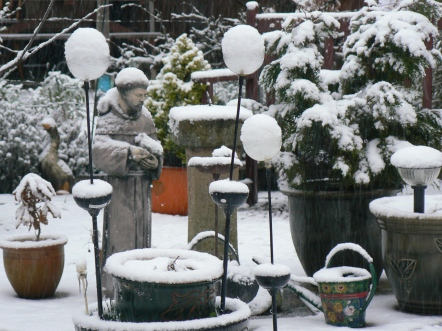 My snow covered garden