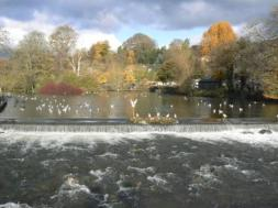Bakewell in Yorkshire