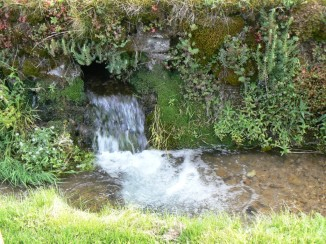Spring water gushing at Compton Abdale in the Cotswolds