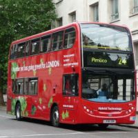 Red London Bus ~ Number 24