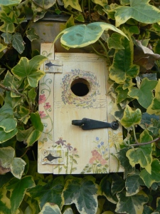 My Blue Tit's Bird House
