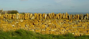 dry stone wall in the cotswolds