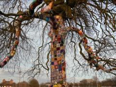Remembrance Tree 5
