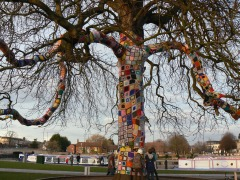 Remembrance Tree in Stratford Basin