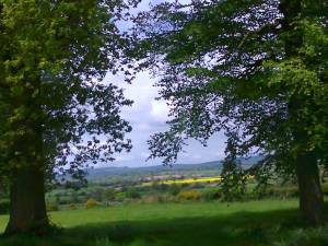 Kimbolton in Herefordshire