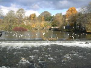 Weir at bakewell in Yorkshire
