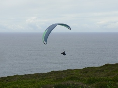 wind surfing in Cornwall