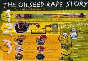 Oilseed Rape Story