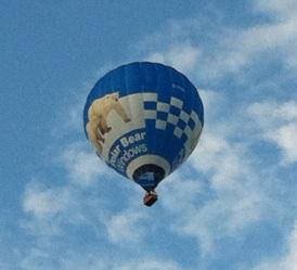 Balloons polar bear