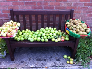 My apple and pear harvest 2015