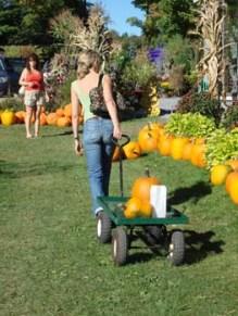 lisa and pumpkin