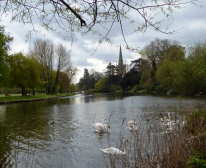 River Avon, swans and Holy Trinity Church