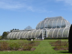 kew glass house
