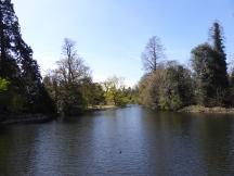 kew lake 3