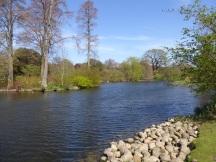 kew lake 4