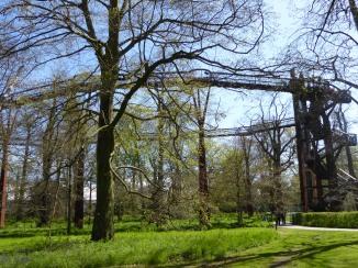 kew treetop walkway 2
