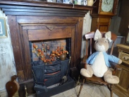 Peter rabbit by the fire