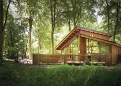 lodges in the forest3