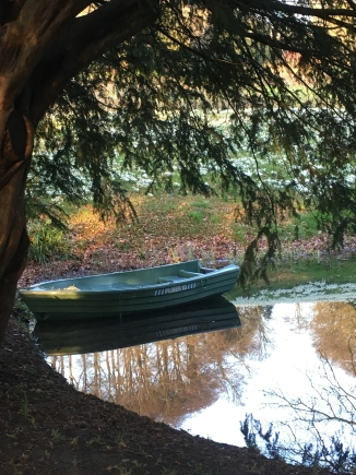 boat 17 feb 17a