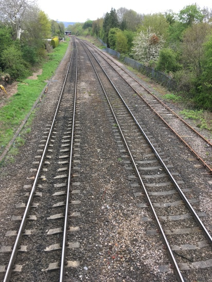 Railway lines run alongside Benhall Woods