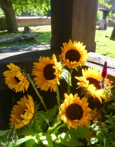 Sunflowers in the porch